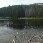 Seymour creek