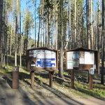 Spring hill campground anaconda mt