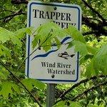 Trapper creek dispersed camping
