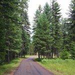 Thompson falls state park