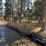 West fork denny creek dispersed camping
