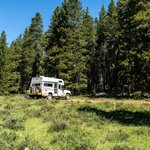 Pole creek road dispersed camping
