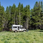 Forest road 375 dispersed camping