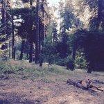 Bear hollow county park