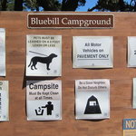 Bluebill campground