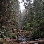 Camp creek campground