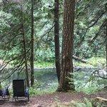 Carter bridge campground