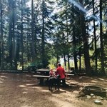 Clear lake campground mt hood nf