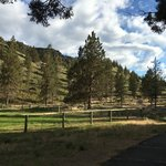 Deschutes campground cove palisades sp