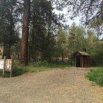 Deerhorn forest camp