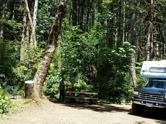 Gales creek campground