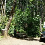 Gales creek campground