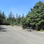 Half moon bay campground