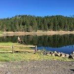 Holbrook reservoir