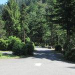 Humbug mountain state park
