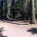 Hurricane creek campground