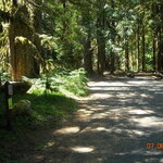 Lost creek campground mt hood nf