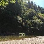 Ludlum campground
