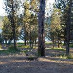 Ochoco lake county park