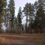 Odessa campground