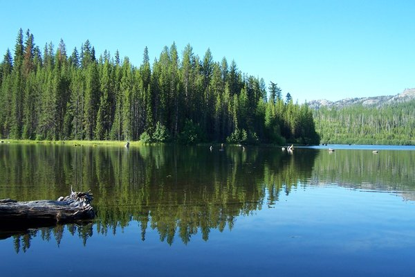 Olive lake campground