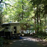 Paradise campground willamette nf