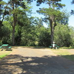 Port of siuslaw campground marina