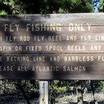 South campground hosmer lake