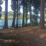 South shore campground deschutes nf