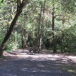Sunshine bar campground