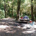 Sunshine bar campground