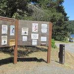 Tahkenitch landing campground