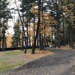 Whitehorse county park
