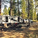 Williamson river campground