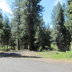 Wildcat campground blm