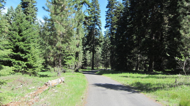 Wildcat campground blm