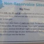 Big pines
