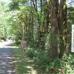 Dosewallips State Park Reviews - Campendium on