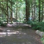 Elwha campground