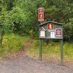 Fields spring state park