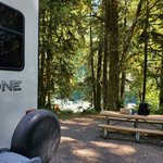 Hoh oxbow campground
