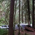Iron creek campground gifford pinchot nf