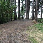Joemma beach state park
