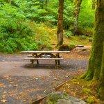 Merrill lake campground