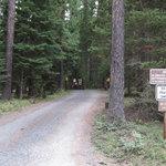 Lake thomas campground