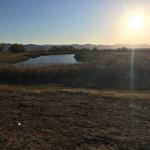 Whitewater draw wildlife area