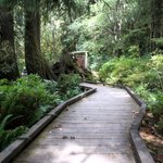 Lyre river campground
