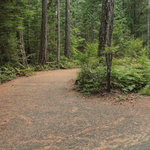 Newhalem creek campground