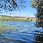 Nunnally lake