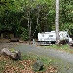 Potlatch state park
